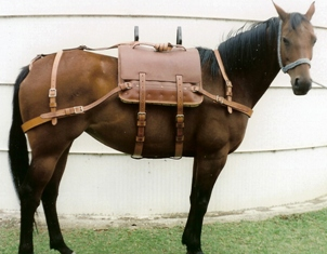 Pack Harness Pack Saddle Pack Bags Asterisk Horse