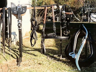 Dress Cart / Lorry harness